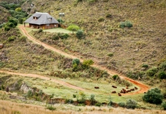 Ribbokkloof Holiday Farm