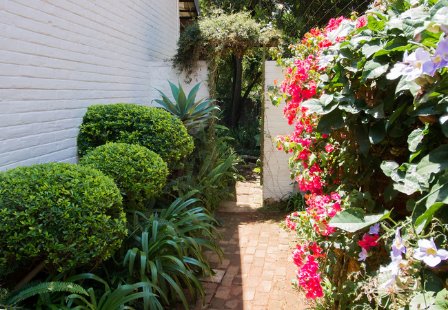 Path leading to Cottage