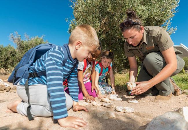 Kid\'s Safari Programme