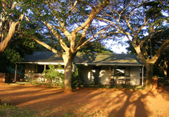 Sand Forest Lodge
