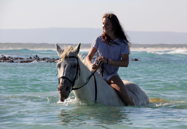 Pearly Beach Horse Trails