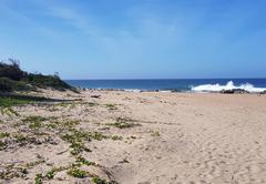 Sea LaVie