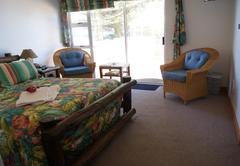 Tropical Room (Ground Floor)