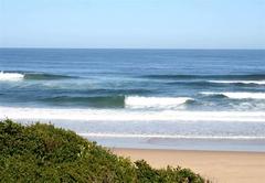 The Seaside Bliss