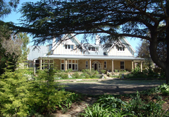 Bed & Breakfast in Harrismith