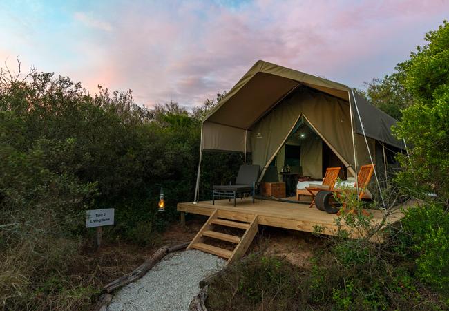 Explorer Guest Tent