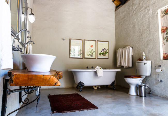 Wild Fig bathroom