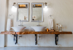 Wildfig Double vanity