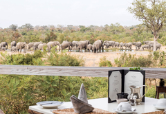Simbambili Game Lodge