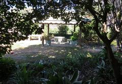 Garden, braai area