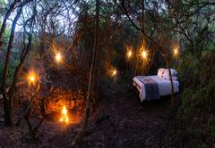 Stargazer Camp