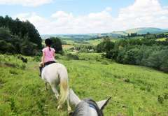Horse Trail