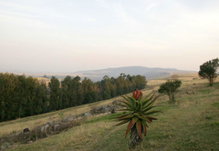 Sugar Fields Lodge