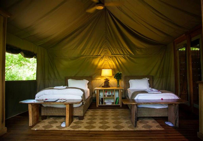 Luxury Twin Tented Suite