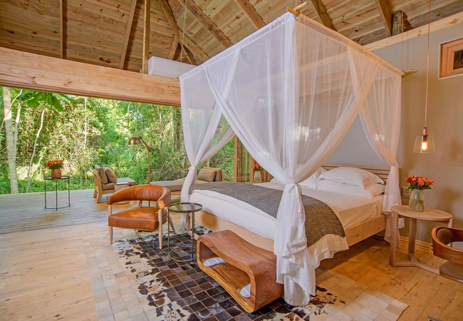 Luxury Forest Suite