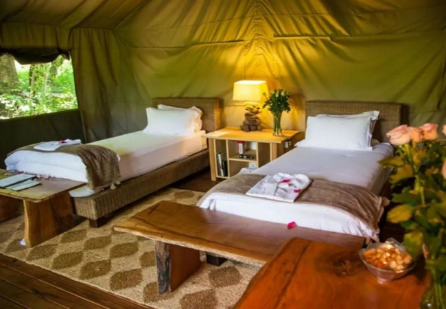 Stream Tented Twin Suites