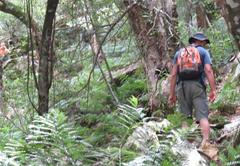 Swartberg Backpackers