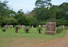Tala Private Game Reserve