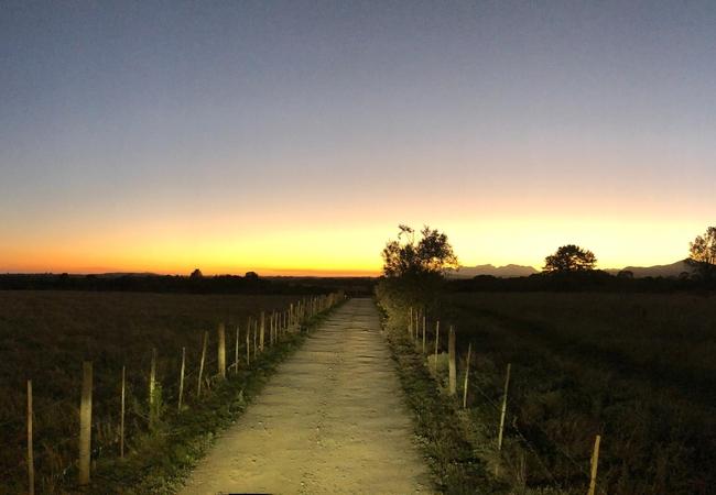 Honeymoon Tree Houses