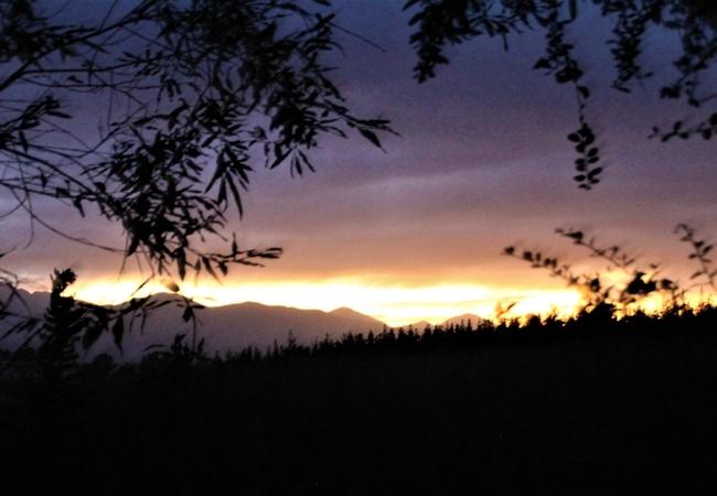 Deluxe Couples Treetop Suite