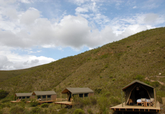 Gondwana Tented Eco Camp