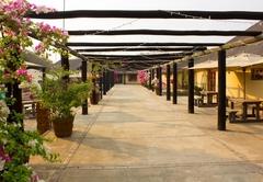 Thabaledi Game Lodge