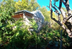 Bamboo, The Guesthouse