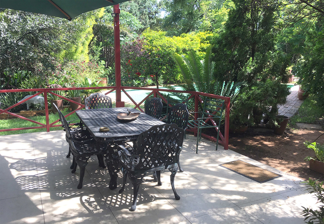 Our Patio under the trees