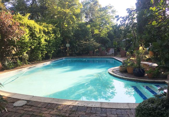 Come for a swim