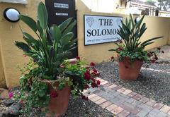 The Solomon