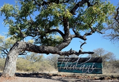 African Bush Chalet with view & boma