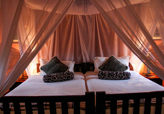 Luxury Safari Suite
