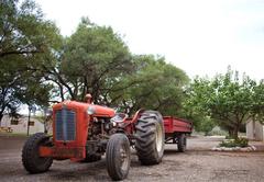 Travalia Guest Farm
