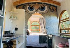 Owl Vardo