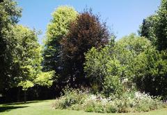 Treelands Estate