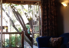 TreeTops & Treats Guest House