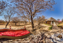 Tshikwalo Game Lodge