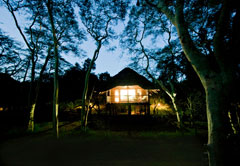Ubizane Tree Lodge