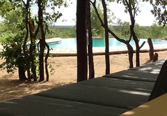 Infinity Pool with honesty bar