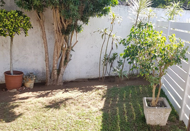 Lavender Room - Garden view