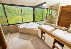 Mountain View Suite 1