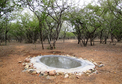 Waterholes at Umvangazi Rest