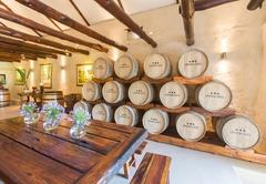 Under Oaks The Vineyard Suites