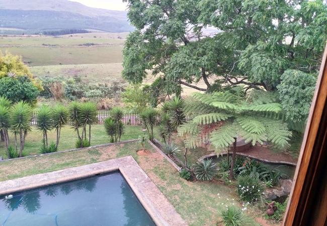 View from Room1 top floor