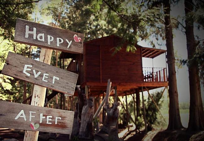 Honeymoon Tree House