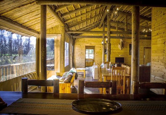 Tree House Family Lodge