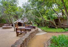 Warthogs Bush Camp