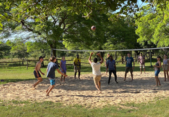 Donkey cart ride for kids