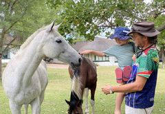 Game drives on offer