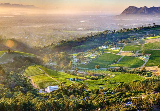 View from Constantia Glen